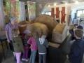 Kindergarten im Forstmuseum (5)