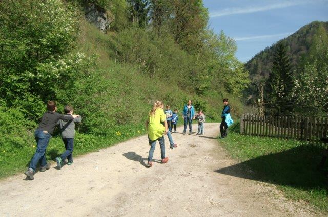 Multitalent Wald (127)