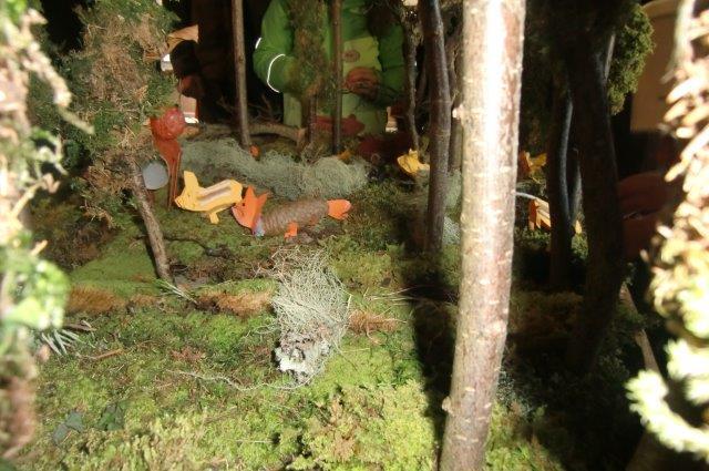 Multitalent Wald (44)