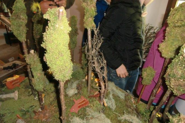 Multitalent Wald (45)