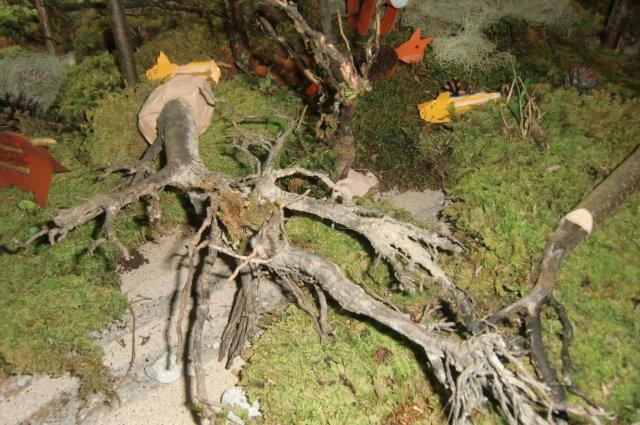 Multitalent Wald (50)