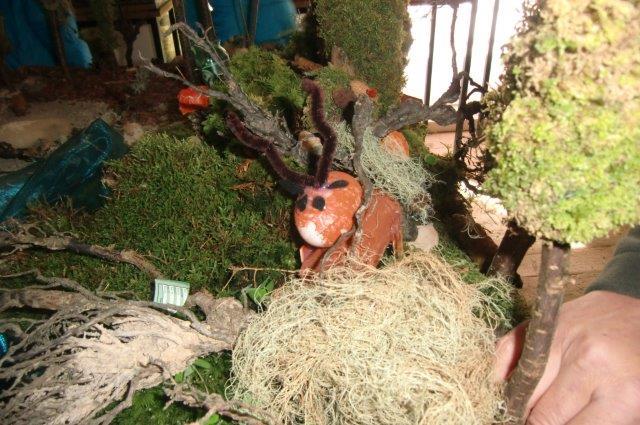 Multitalent Wald (65)