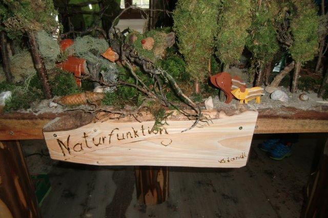 Multitalent Wald (67)