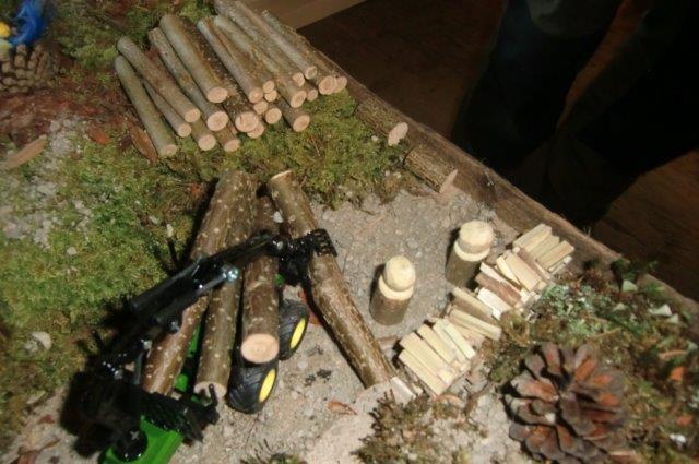 Multitalent Wald (73)