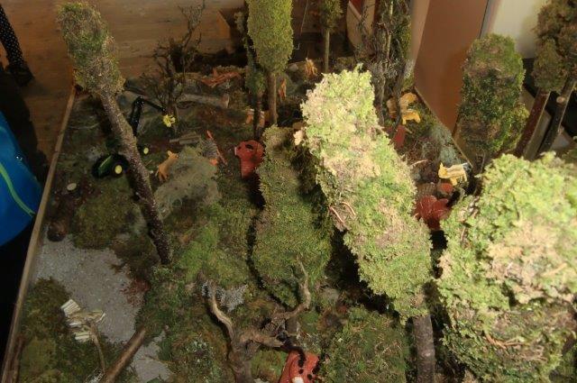Multitalent Wald (74)