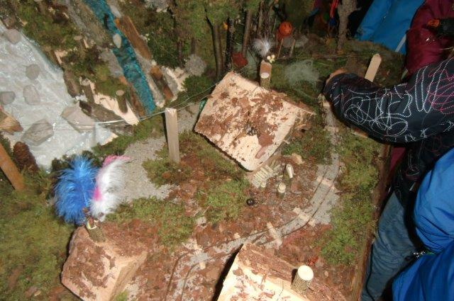 Multitalent Wald (84)