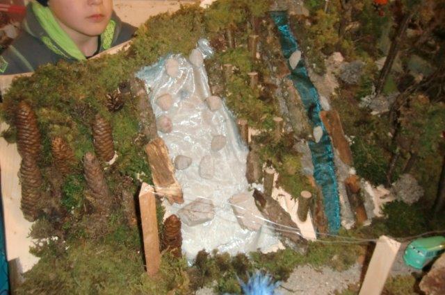 Multitalent Wald (85)