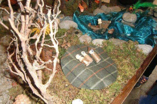Multitalent Wald (95)