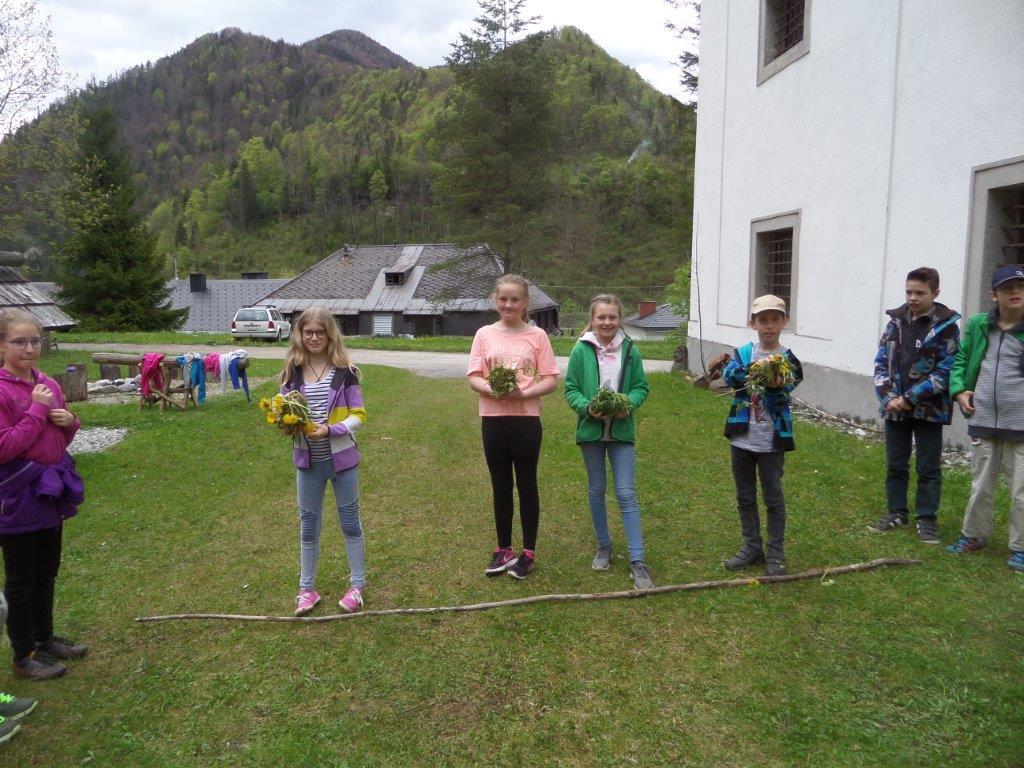 NMS Frankenfels Erlebnisführung 4.5.2017 (10)